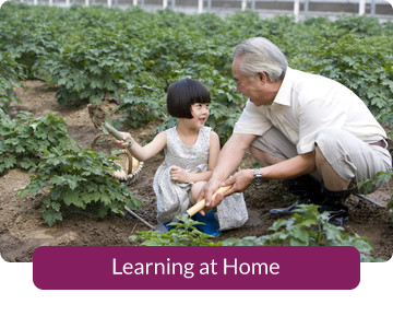 Button link to resources for Learning at Home