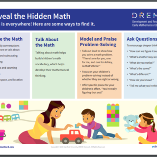 Cover of Reveal the Hidden Math