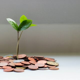Young plant sticking out of pile of coins
