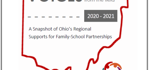 Voices from the field report cover, a regional snapshot of practices